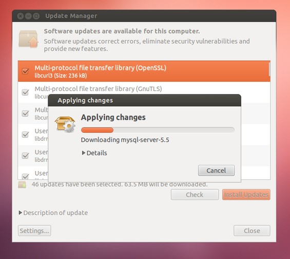 Ubuntu Upgrade 13.04 Step 2