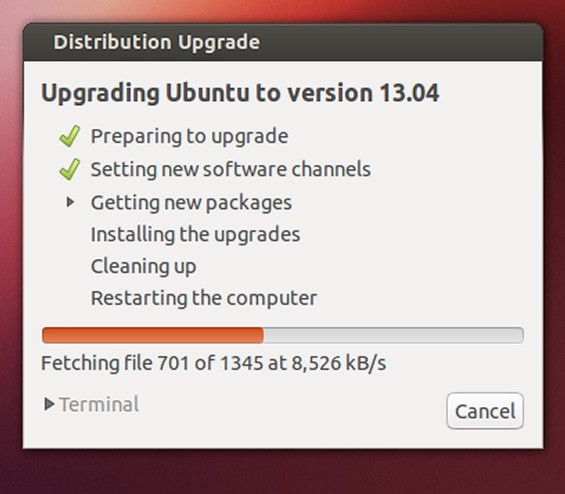 Ubuntu Upgrade 13.04 Step 8